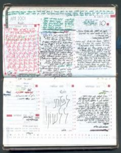 Typical_Page_from_Malki's_Diary